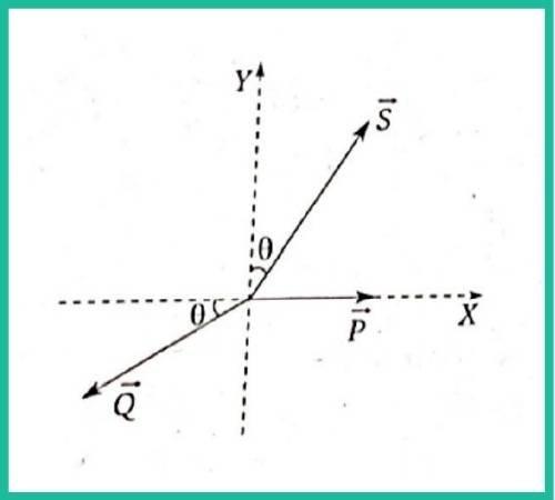 analisis vectorial pregunta 10 imagen 1