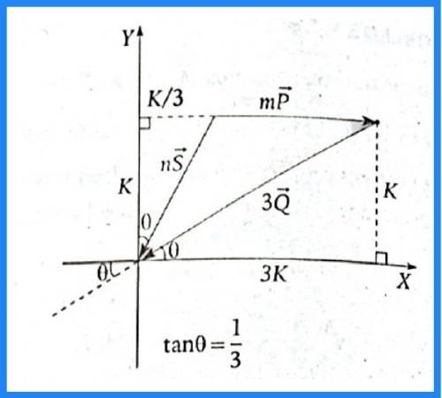 analisis vectorial pregunta 10 imagen 2