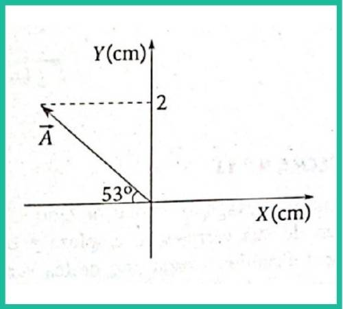 analisis vectorial pregunta 11 imagen 1