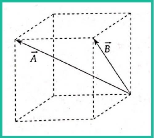 analisis vectorial pregunta 12 imagen 1