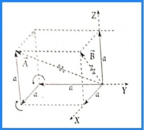 analisis vectorial pregunta 12 imagen 2