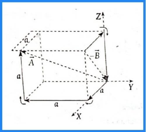 analisis vectorial pregunta 12 imagen 3