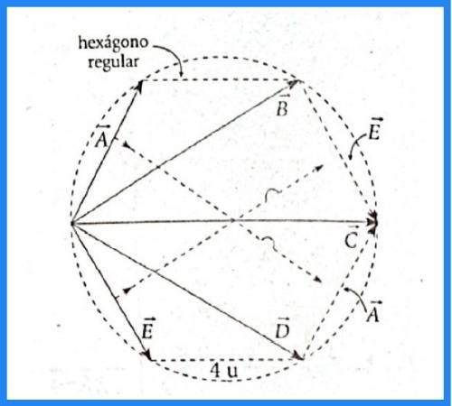 analisis vectorial pregunta 13 imagen 1