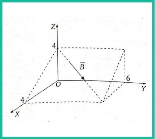 analisis vectorial pregunta 14 imagen 1