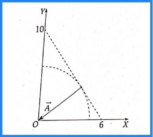 analisis vectorial pregunta 15 imagen 1