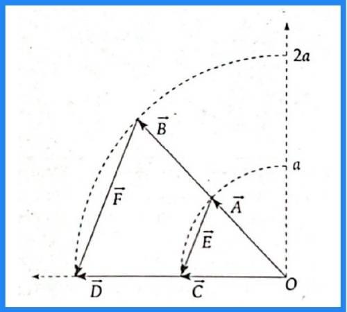 analisis vectorial pregunta 16 imagen 1