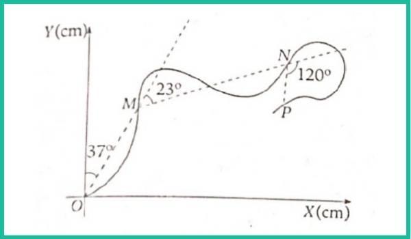 analisis vectorial pregunta 17 imagen 1