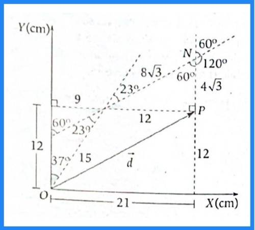 analisis vectorial pregunta 17 imagen 2