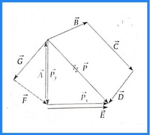 analisis vectorial pregunta 19 imagen 2