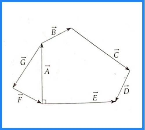 analisis vectorial pregunta 19