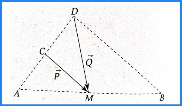 analisis vectorial pregunta 3 imagen 1