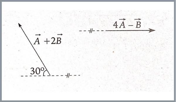 analisis vectorial pregunta 4 imagen 1