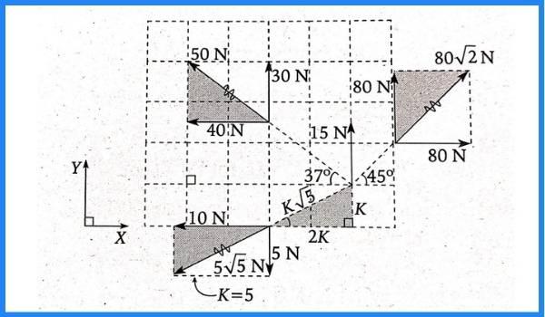 analisis vectorial pregunta 5 imagen 2
