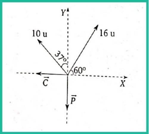 analisis vectorial pregunta 8 imagen 1