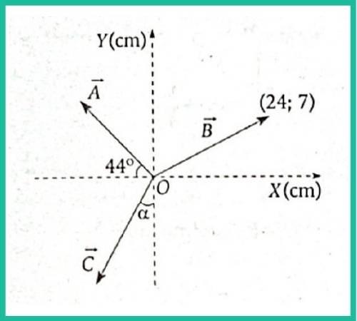 analisis vectorial pregunta 9 imagen 1