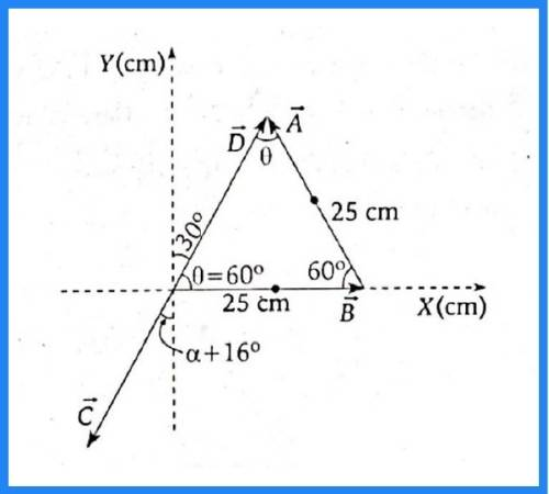 analisis vectorial pregunta 9 imagen 3