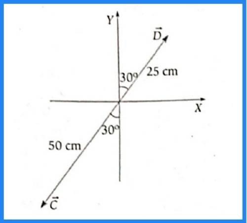 analisis vectorial pregunta 9 imagen 4