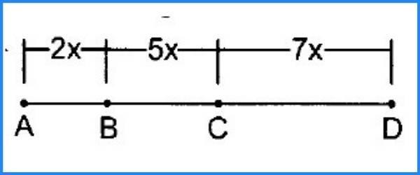 segmentos geometria 10
